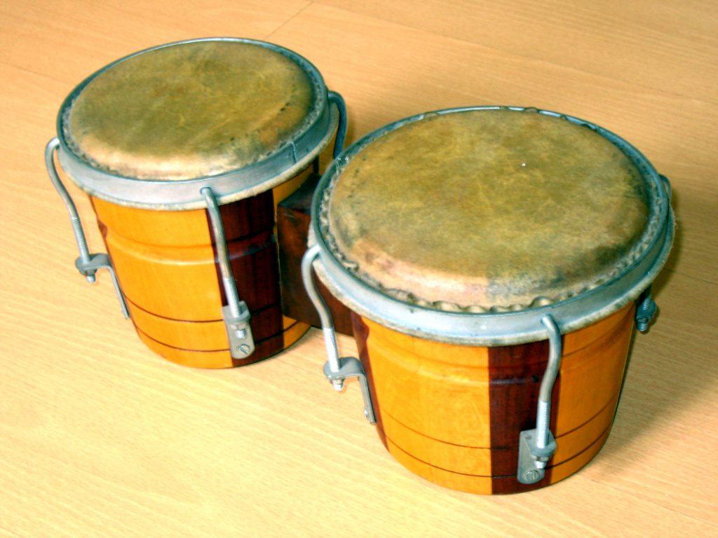 Cualidades del bongo