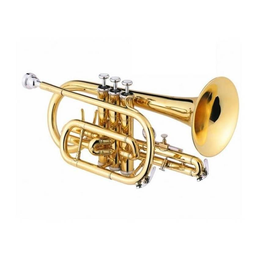 partes de la corneta