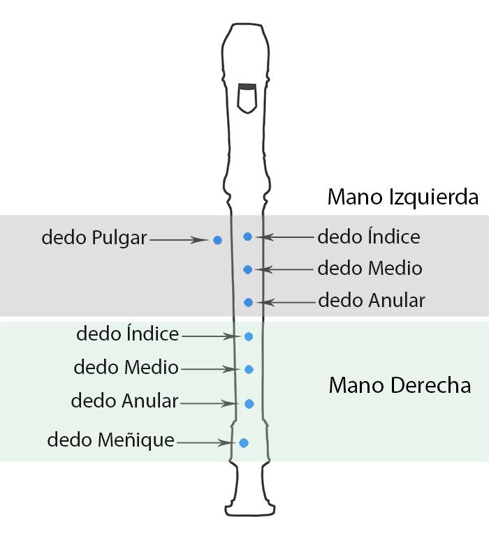 Flauta Dulce Características Y Ofertas Musicasencilla