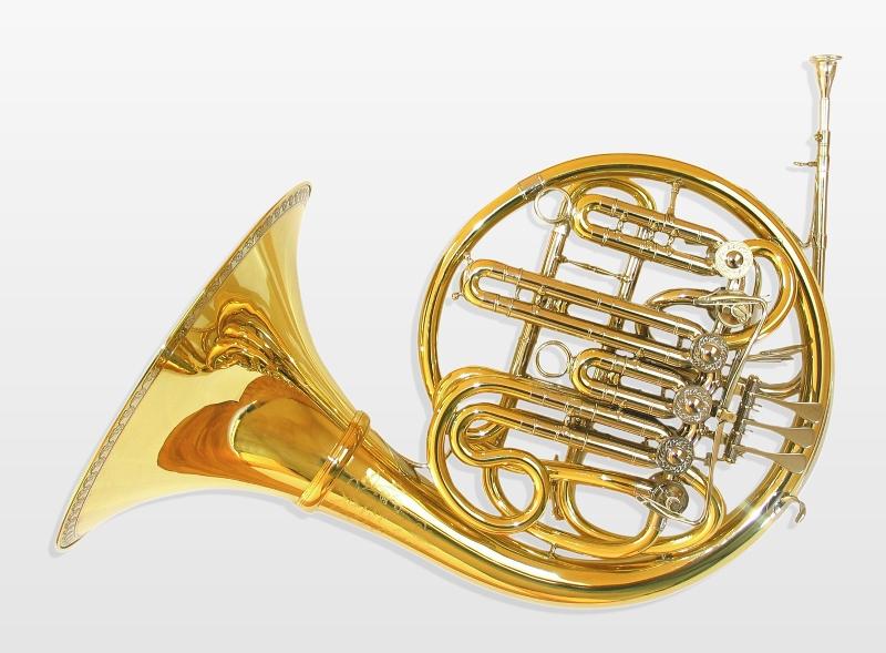 Trompa – Características y Ofertas