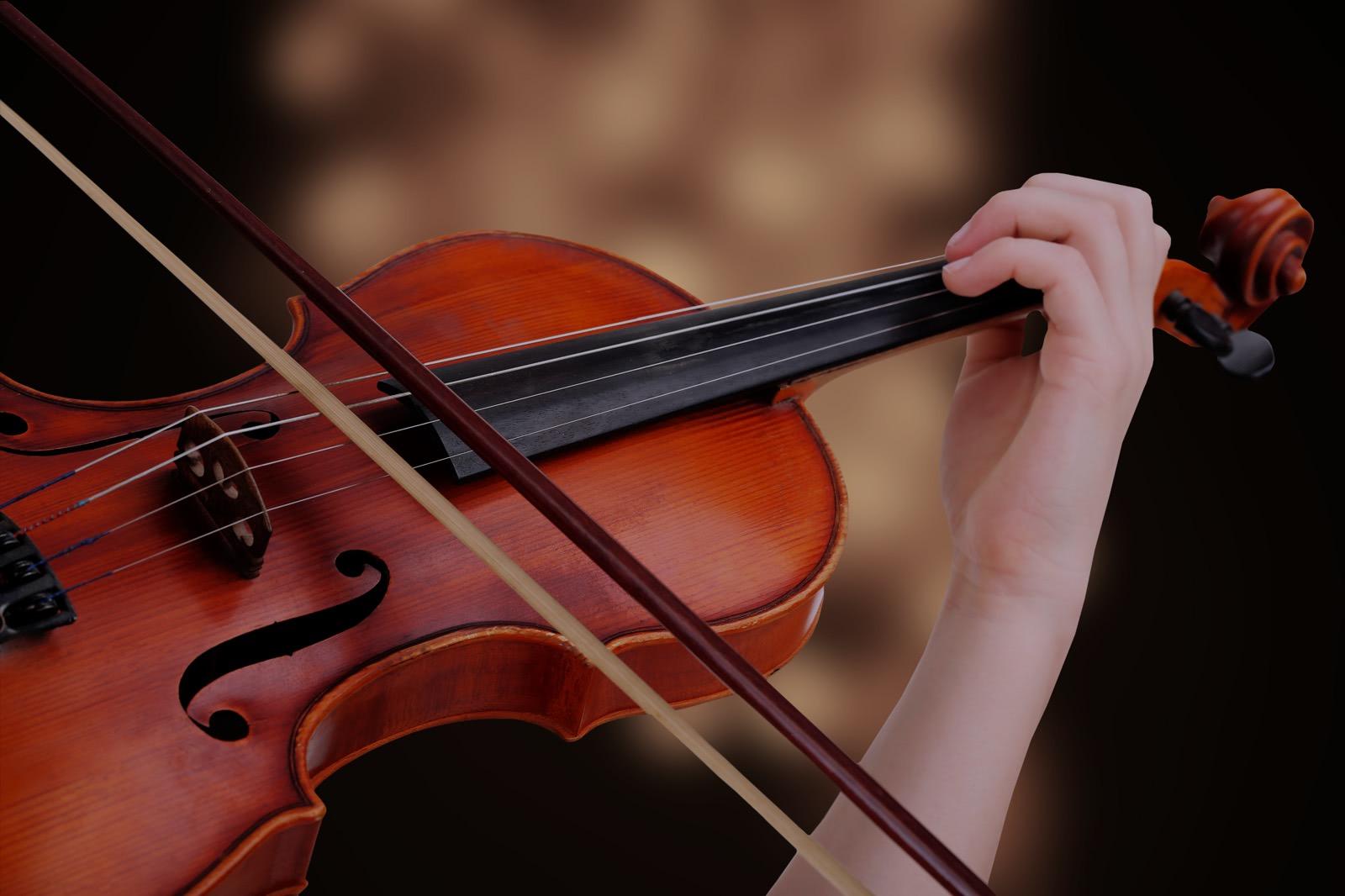 Viola – Características y Ofertas